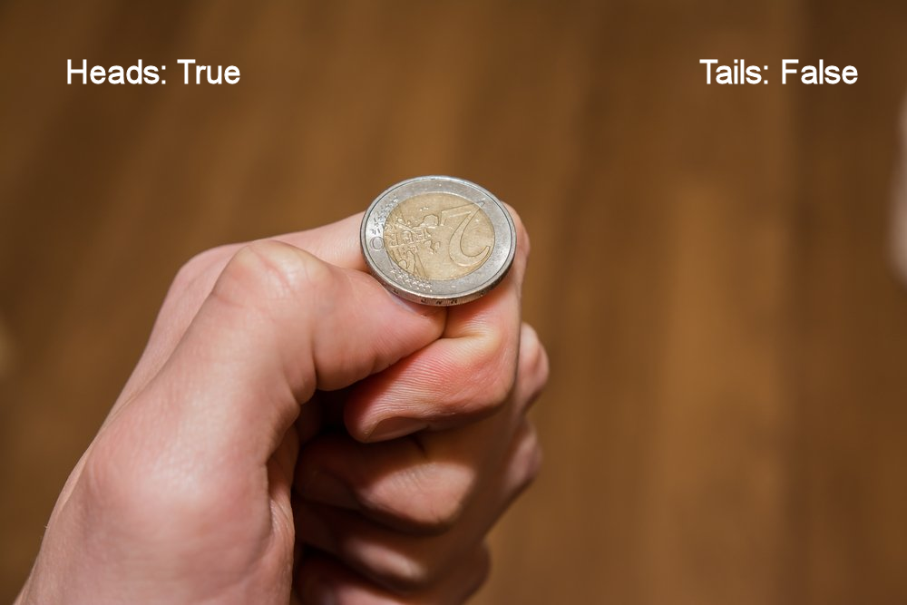 coin-flip - Captioned